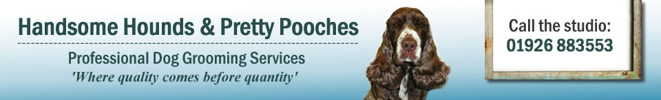 Handsome Hounds & Pretty Pooches - Professional Dog Grooming Services in Leamington Spa - Where quality comes before quantity